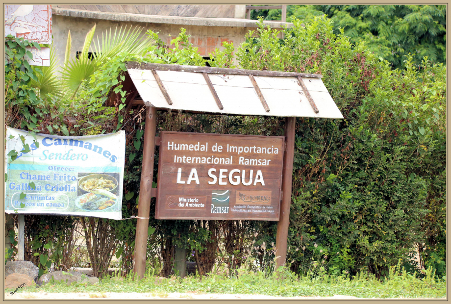 UE8A8246 La Segua.jpg