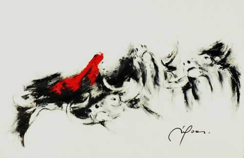 291 Toro's 4  ( 92 x 60 ).jpg