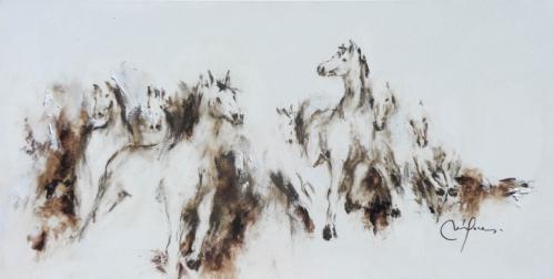208 chevaux(120x60).jpg