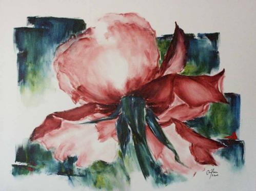 52 rose (130x97).jpg
