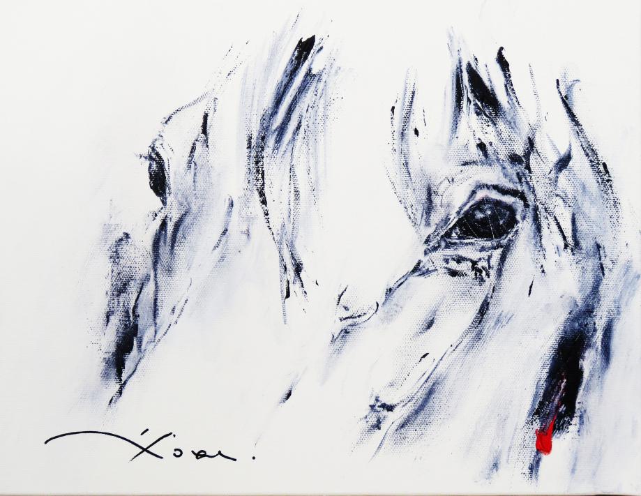 418 d'Yeux ( 35 x 27 ).jpg