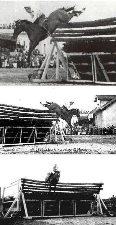 Record du monde de saut d'obstacle.jpg