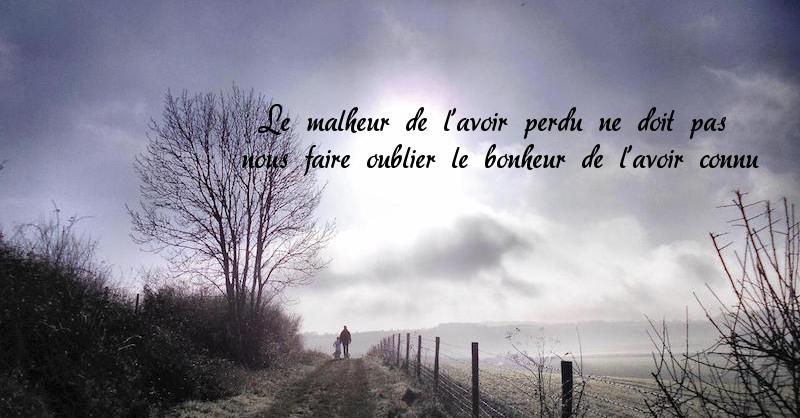 carte_condoleances_chemin_homme_seul.jpg