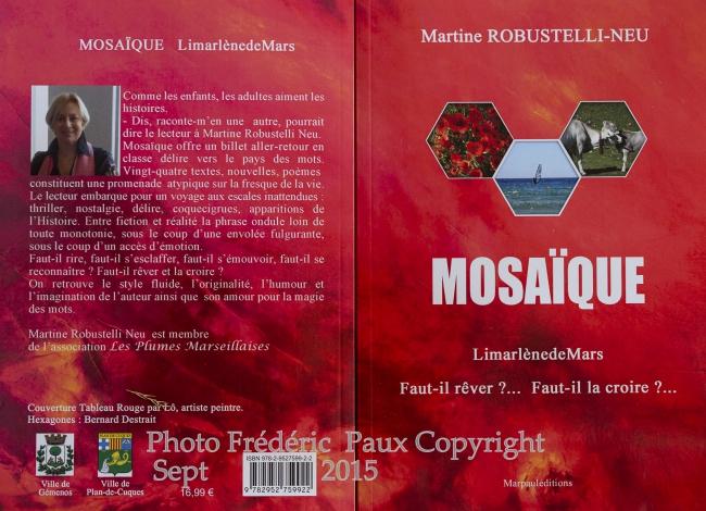Paux  mosaique(1sur3)MA29491360-0002 Copyright.jpg