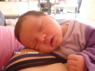 Bébé espoir de Sandie(judalexie)