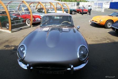 Jaguard type 42 vue de devant
