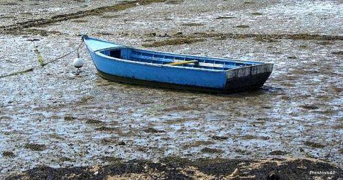Barque à marrée basse