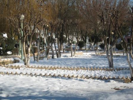 Sétif sous la neige fin janvier 2012