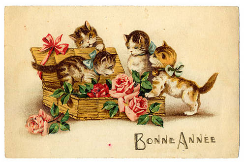 carte postale ancienne chat voeux.jpg