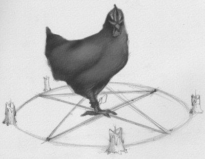poule noire  S Gestin.jpg