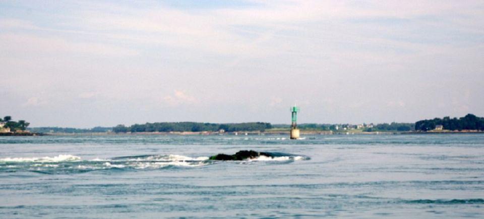 Pêcheur de dorades et de bars dans le Golfe du Morbihan