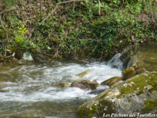 La rivière avec son clapautis printanier
