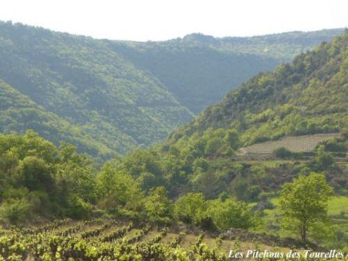 Le fond de vallée St Pierre, une oasis de fraîcheur l'été
