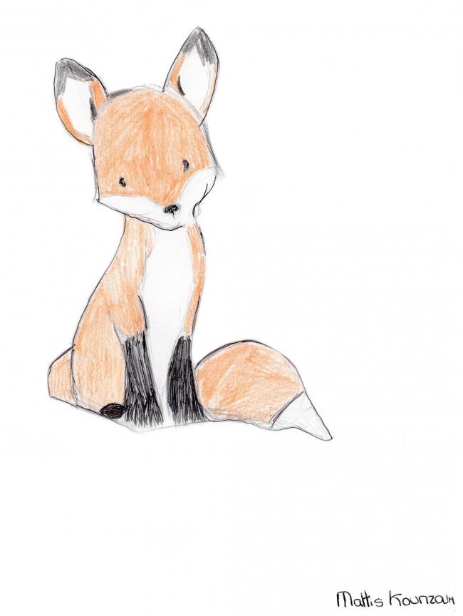 Fox003-rtk.jpg