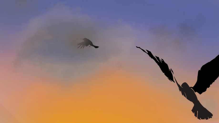 luc octobre 2016 oiseau.jpg