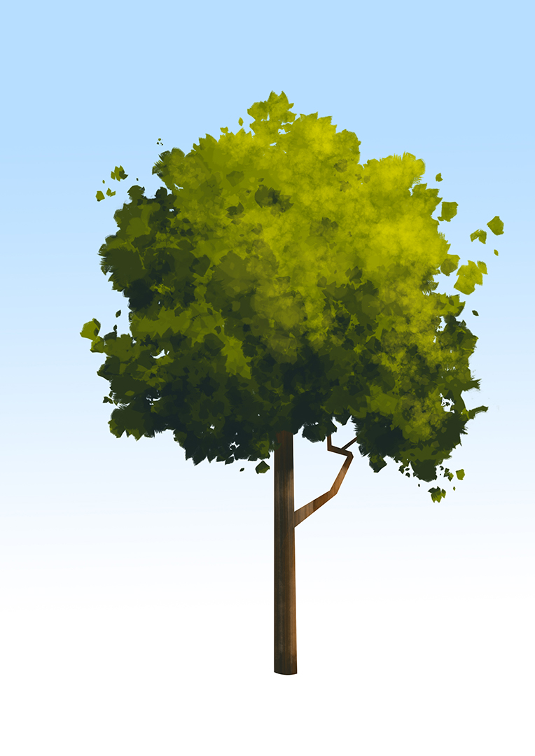 demo_arbre.jpg