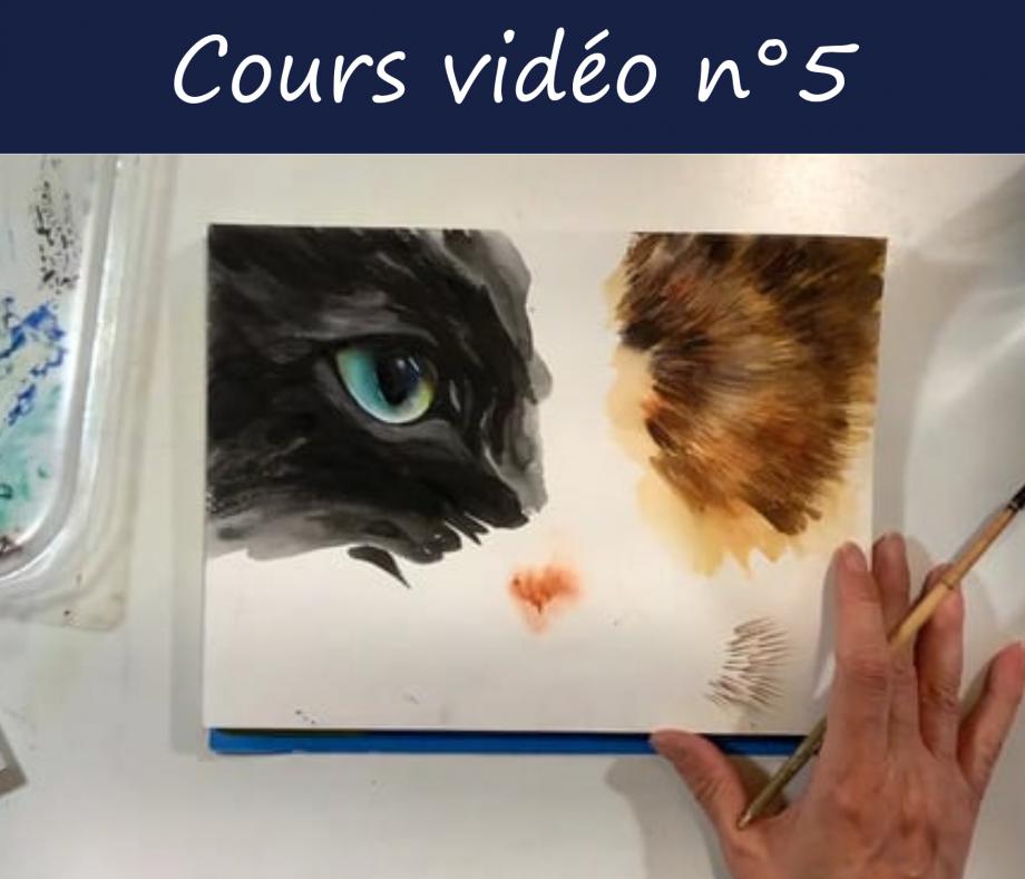 CoursVideo5.jpg