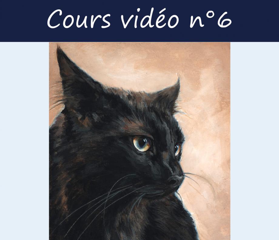 CoursVideo6.jpg