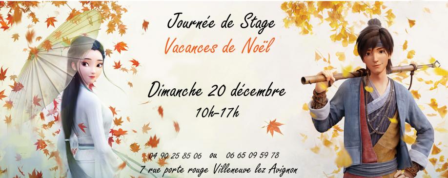 stage_20decembre4.jpg