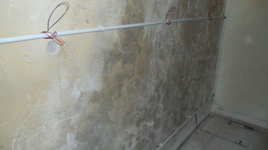 assecheur de mur top summit spwd slim with assecheur de mur excelvan mini duair portable. Black Bedroom Furniture Sets. Home Design Ideas