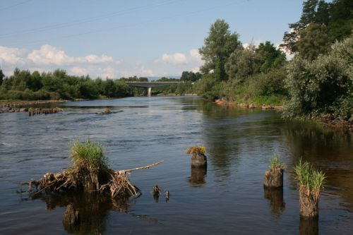 La biodiversité dans le courant de Loire