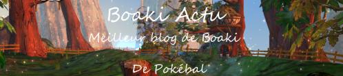 Logo Boaki Actu V2.1.png