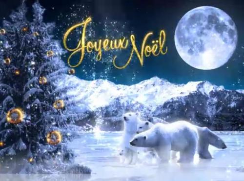 Voyage au pays de Noël.jpg