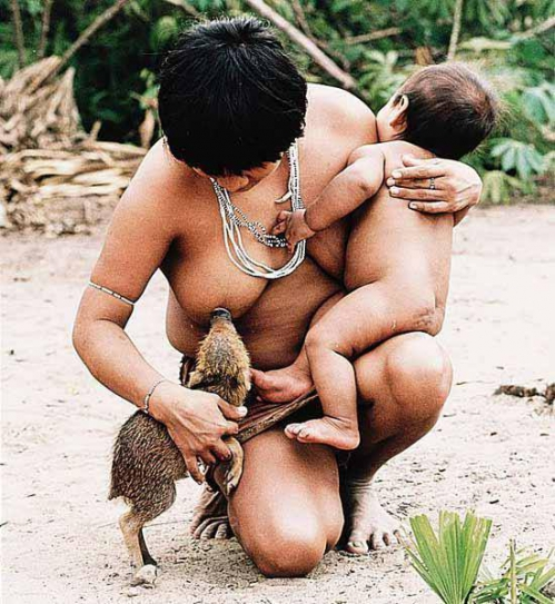 belle image tribu animaux.jpg