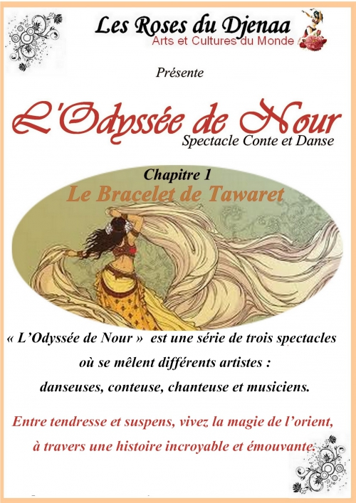 spectacle l'Odyssée de Nour.jpg