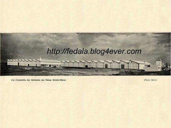 swscan183-1950strafor.jpg