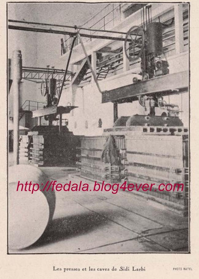 1928sidi-larbi01.jpg
