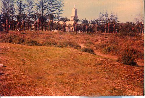 vue générale du parc et de  l église