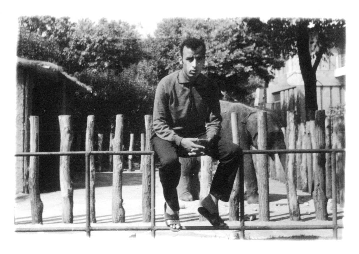 ZOO ZURICH SUISSE AOUT 1969