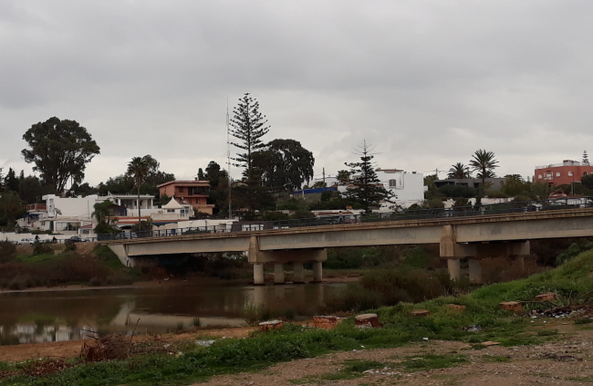 oued néfifike