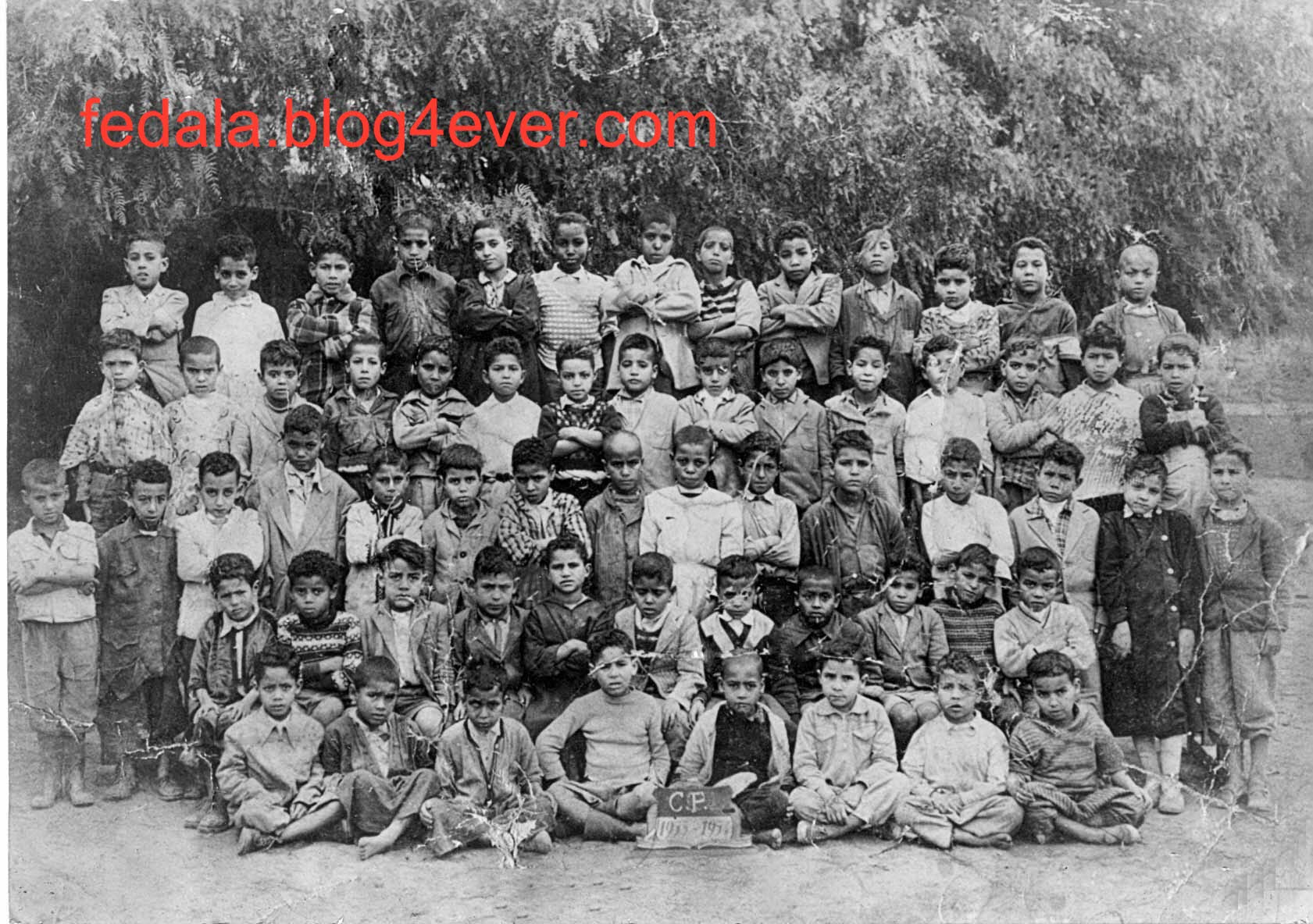 année scolaire 1953/54 CP