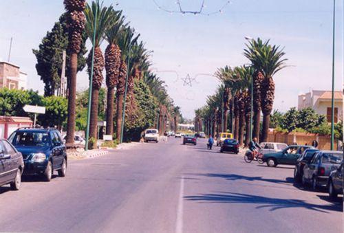 avenue mohammed V