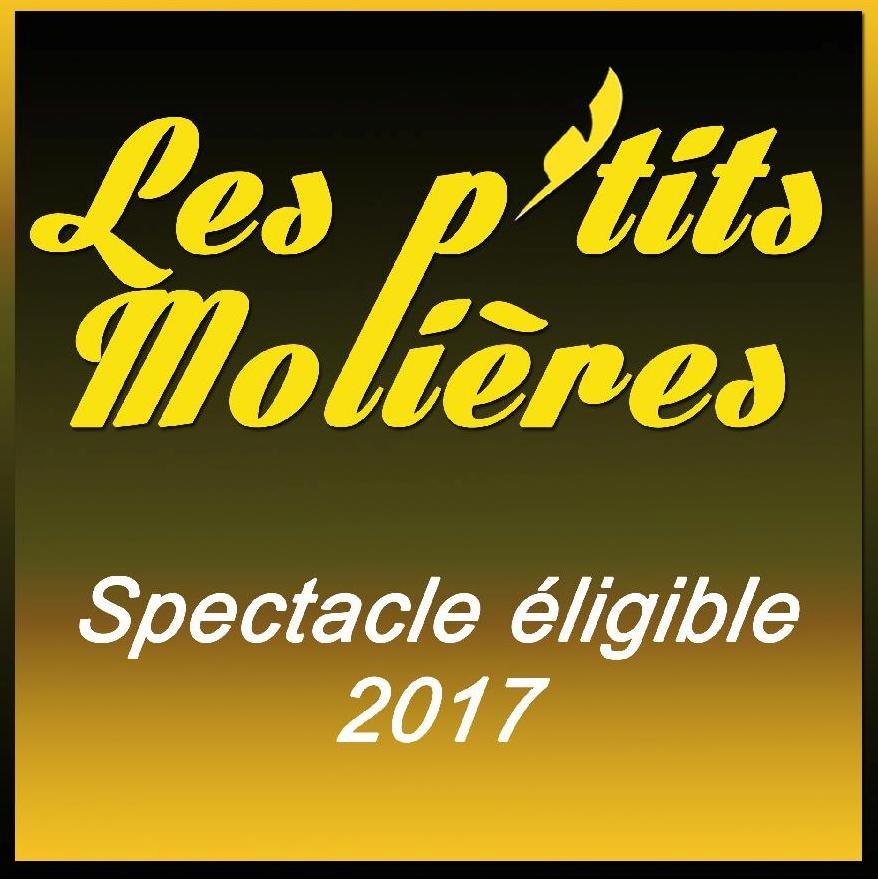 LOGO spectacles éligibles 2017.JPG