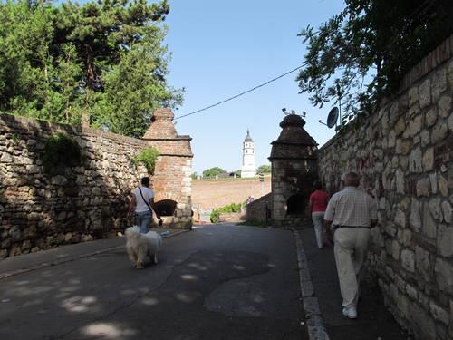 Au fil du Danube 1339.jpg