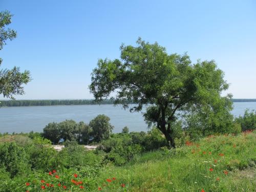 Au fil du Danube 1863.jpg
