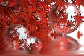 automne_goutte_d'eau.jpg