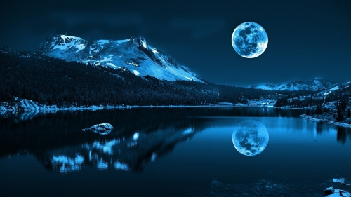 nature_nuit.jpg