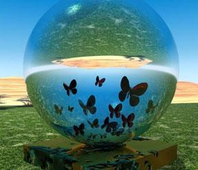 monde-papillons.jpg