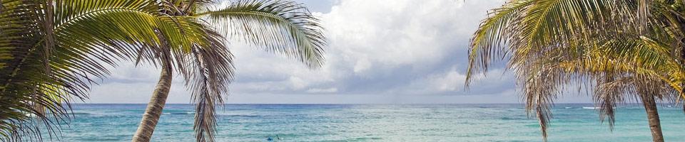 Les Résidences de l'Isle : samj.blog