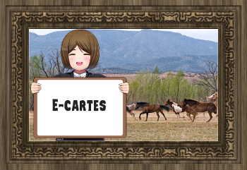 https://static.blog4ever.com/2010/09/437182/2ecartes.png?rev=1549372214