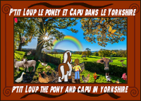https://static.blog4ever.com/2010/09/437182/VIGNjeu138ptit-Loup-et-capu-dans-le-yorkshire.png?1550067201?rev=1562256087