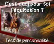 testpersonnalitecestquoipourtoilequitation.jpg