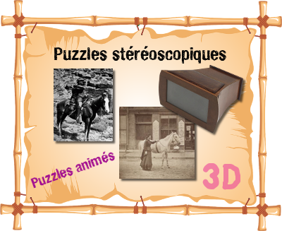 puzzles-3d-stereoscopiques.png