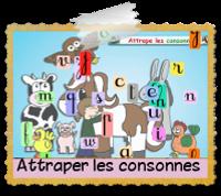 attrapeconsonnes.png