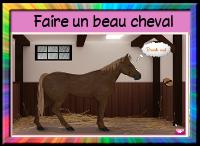 jeu-soignetoncheval-cheval-leblogdefafa.blog4ever.com.png