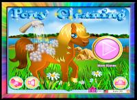 jeu-pansage-cheval-leblogdefafa.blog4ever.com.png